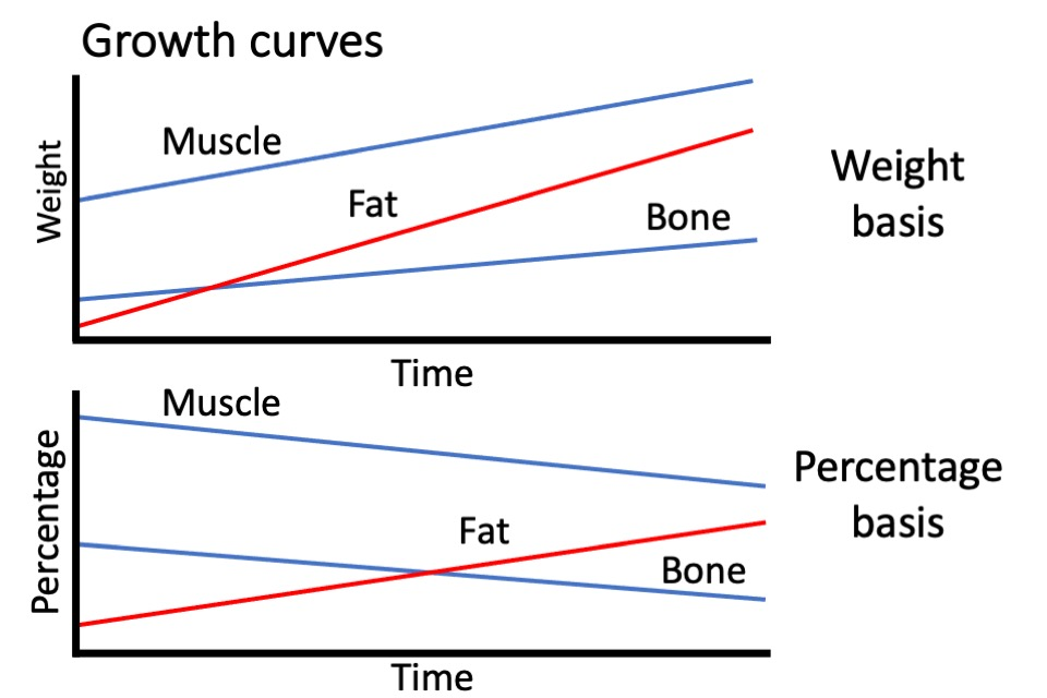 Growth curves; growth and development